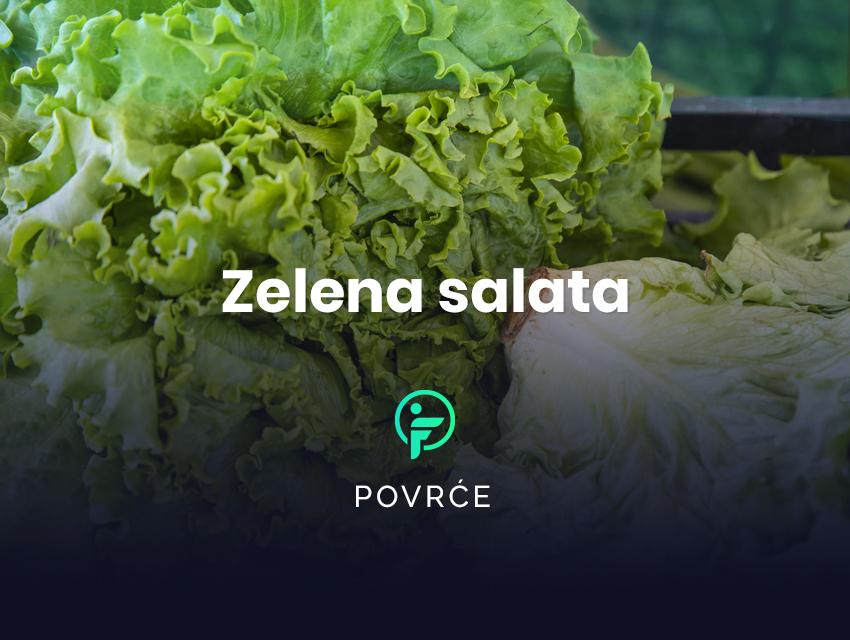 zelena salata